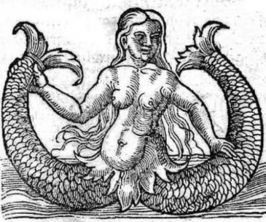 two-tailed mermaid from Naturalis Historia (1565)